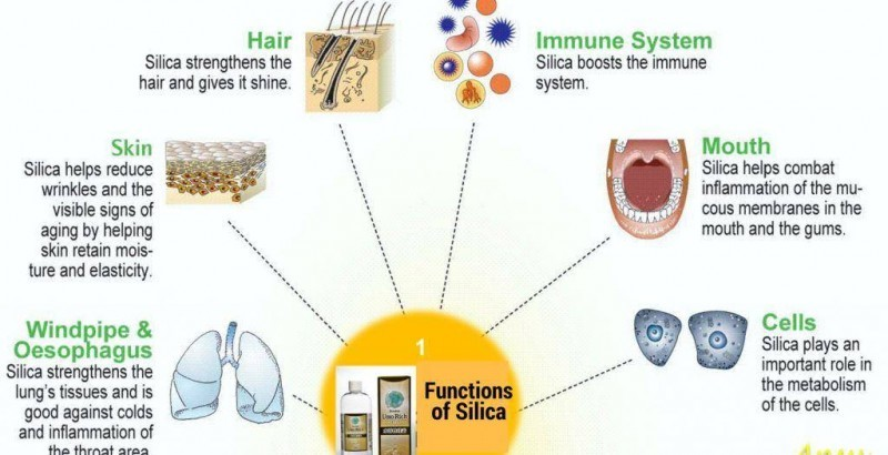 Health benefits of Umo Silica, Umo Silica Helps Blood Vessels, Bones, Joints & Nails   Pasar Online Shop, Wellness Store