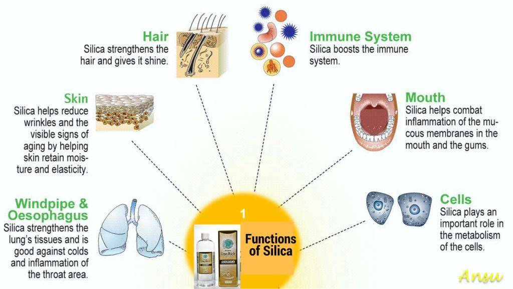 Silica, health benefits of silica, Umo Silica Helps Immune System, Hair, Skin & Cells