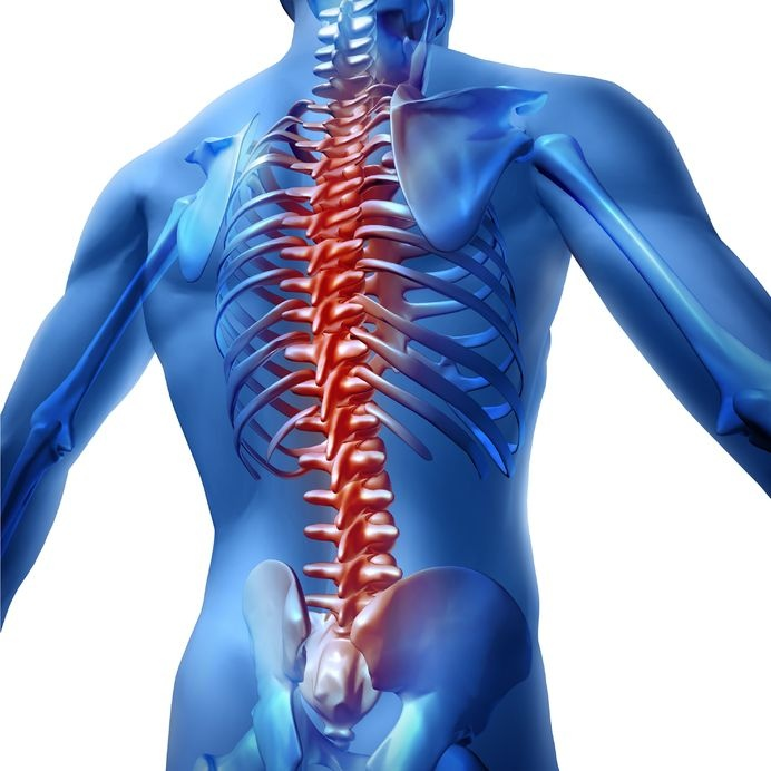 back pain,lower back pain