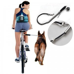 Bike dog leash attachment for hands free dog training while cycling