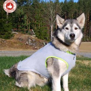 Dog cooling vest adjustable mesh reflective pet cooling harness