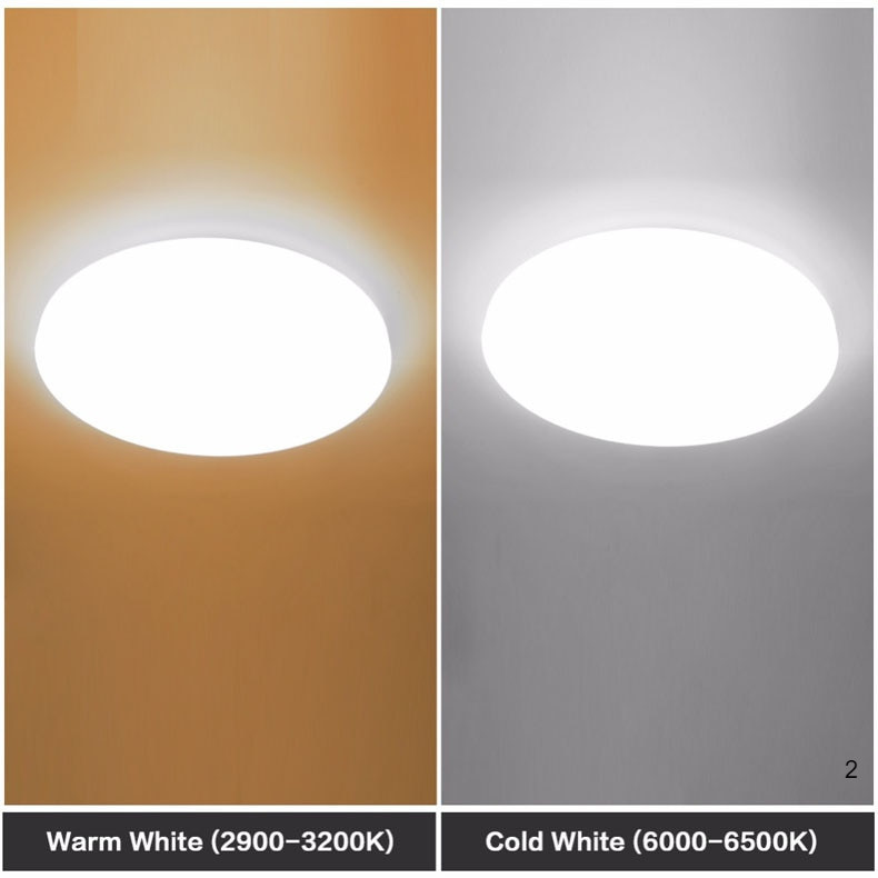 warm white and cold white of circular LED lights